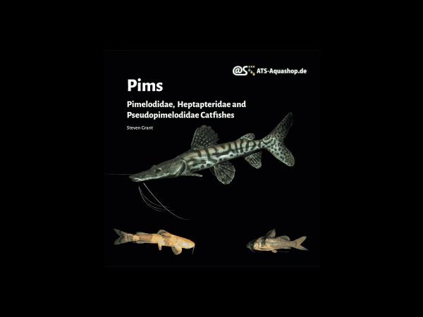 Pims Pimelodidae, Heptapteridae and Pseudopimelodidae Catfishes