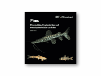 Pims Pimelodidae, Heptapteridae and Pseudopimelodidae...